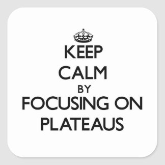 Keep Calm by focusing on Plateaus Square Sticker