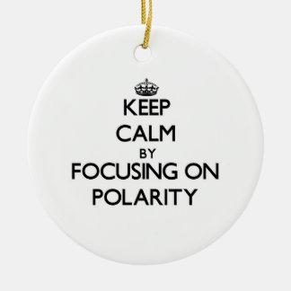 Keep Calm by focusing on Polarity Christmas Ornaments