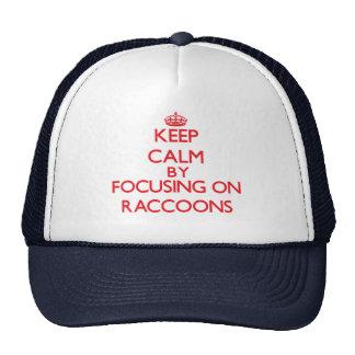 Keep calm by focusing on Raccoons Cap