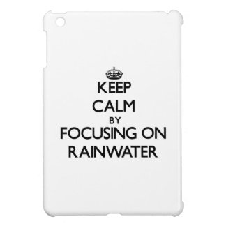 Keep Calm by focusing on Rainwater Case For The iPad Mini