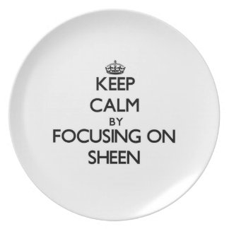 Keep Calm by focusing on Sheen Dinner Plates