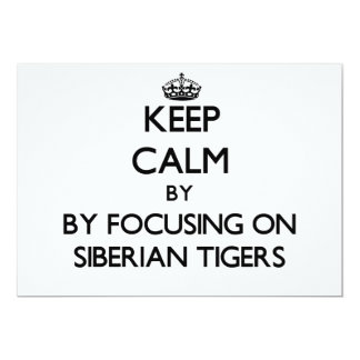 Keep calm by focusing on Siberian Tigers Custom Invites