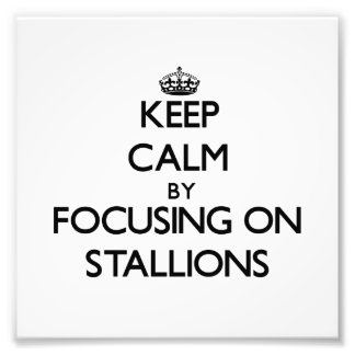 Keep Calm by focusing on Stallions Photo Art