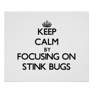 Keep Calm by focusing on Stink Bugs Poster
