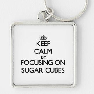 Keep Calm by focusing on Sugar Cubes Keychains