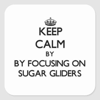 Keep calm by focusing on Sugar Gliders Square Sticker