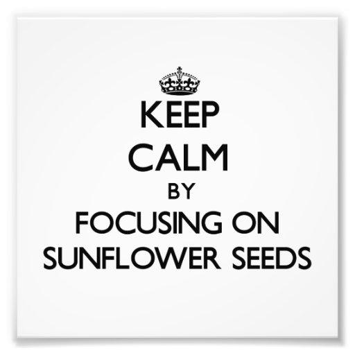 Keep Calm by focusing on Sunflower Seeds Photo Print