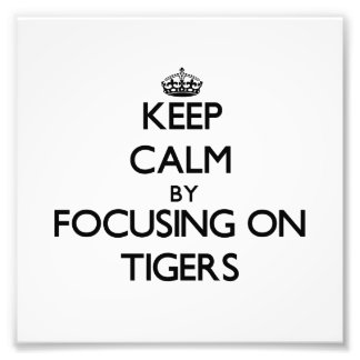 Keep Calm by focusing on Tigers Photo Print