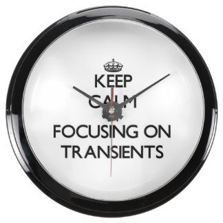 Keep Calm by focusing on Transients Aquarium Clock
