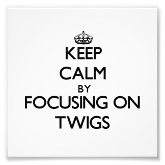 Keep Calm by focusing on Twigs Art Photo