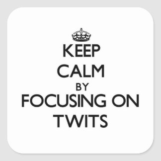 Keep Calm by focusing on Twits Square Sticker