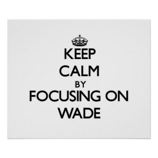 Keep Calm by focusing on Wade Poster