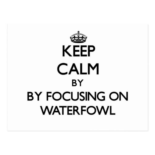 Keep calm by focusing on Waterfowl Postcards