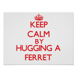 Keep calm by hugging a Ferret Posters
