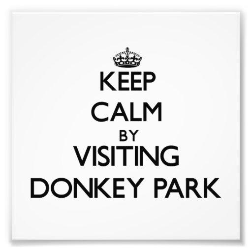 Keep calm by visiting Donkey Park Hawaii Photo