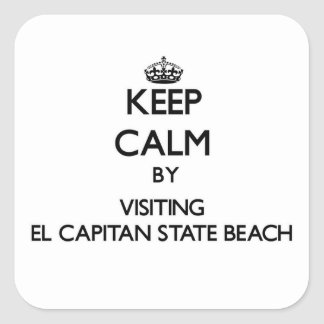 Keep calm by visiting El Capitan State Beach Calif Square Sticker