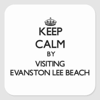 Keep calm by visiting Evanston Lee Beach Illinois Stickers