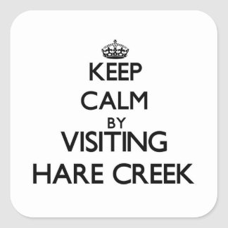 Keep calm by visiting Hare Creek California Stickers