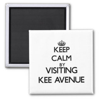 Keep calm by visiting Kee Avenue Alabama Fridge Magnet