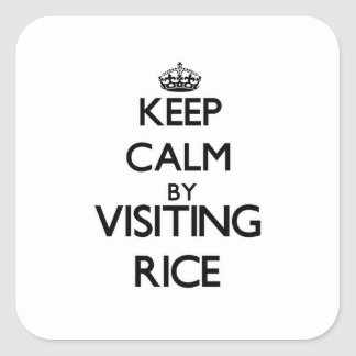 Keep calm by visiting Rice Massachusetts Square Stickers