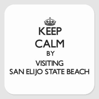 Keep calm by visiting San Elijo State Beach Califo Square Sticker