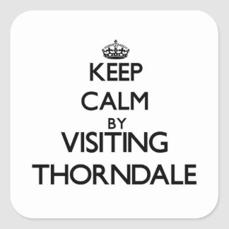 Keep calm by visiting Thorndale Illinois Square Stickers