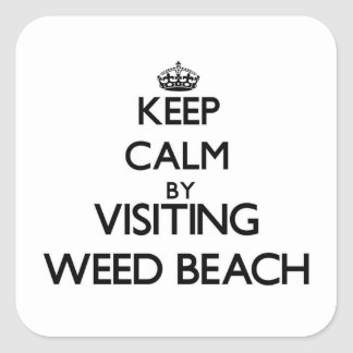 Keep calm by visiting Weed Beach Connecticut Square Sticker