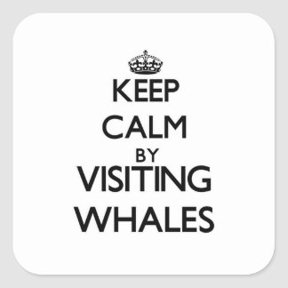 Keep calm by visiting Whales Massachusetts Stickers