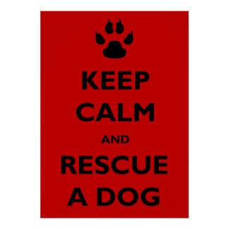 Keep calm dog rescue poster