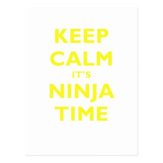 Keep Calm its Ninja Time Postcard