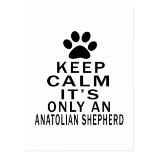 Keep Calm It's Only an anatolian shepherd Dog Post Card