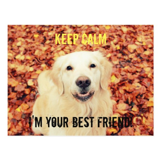KEEP CALM Postcard for dogs lovers