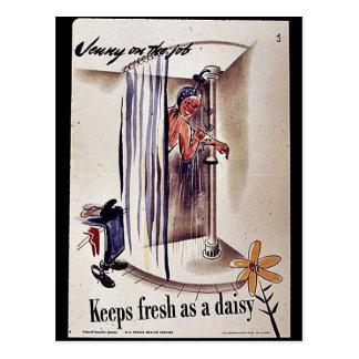 Keep Fresh As A Daisy Post Cards