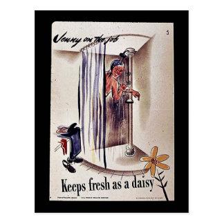 Keep Fresh As A Daisy Postcards