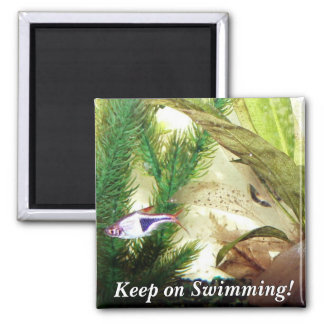 Keep on Swimming! Magnet