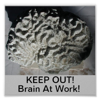 KEEP OUT Brain At Work Posters