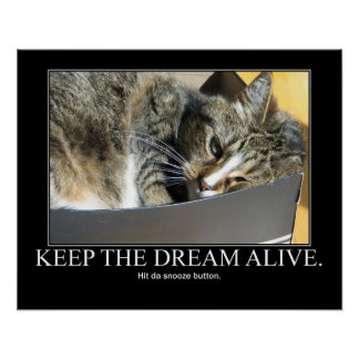 Keep the Dream Alive Cat Artwork Poster