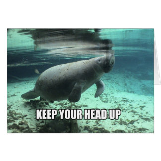 """Keep Your Head Up"" Calming Manatee Greeting Card"