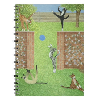 Keeping on ones toes notebooks