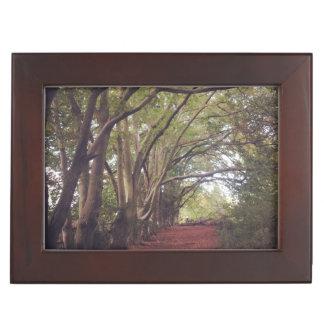 Keepsake Box. Woods. Dimensions: 16.5 cm x 21.6 cm Keepsake Box