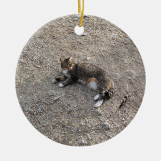Keepsake Ornament: Tabby Cat with White Feet Christmas Ornament