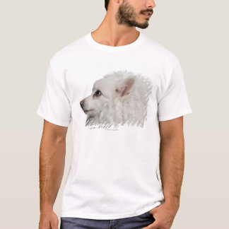 Keeshond (10 years old) close-up T-Shirt