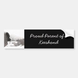 Keeshond at Shadow's Creek Bumper Sticker