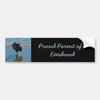 Keeshond Ballet Photograph - Cute Original Dog Art Bumper Sticker