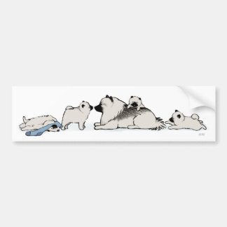 Keeshond Family with Blue Sock Bumper Sticker