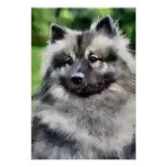 Keeshond Gifts Art Prints