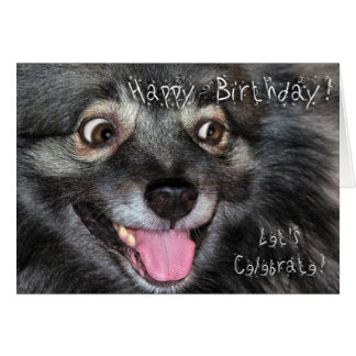 Keeshond Happy Birthday greeting card