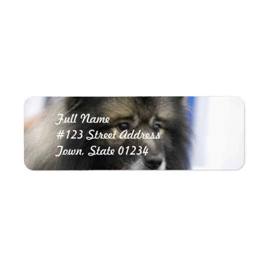 Keeshond Mailing Labels