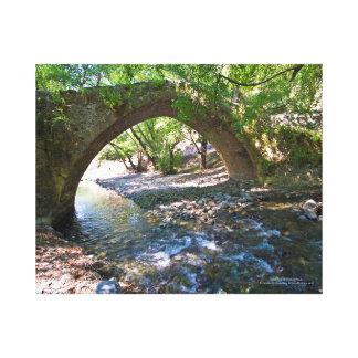 Kelefos medieval bridge in Cyprus forest Canvas Print
