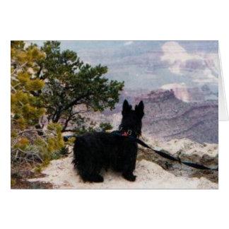 Kelly Boo at Grand Canyon Greeting Card